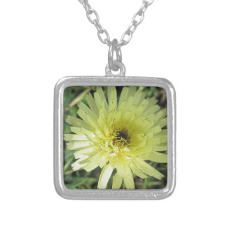 Meadow salsify flower silver plated necklace