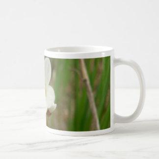 Meadow Saxifrage Flower Mugs