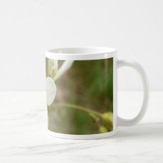 Meadow Saxifrage Mugs