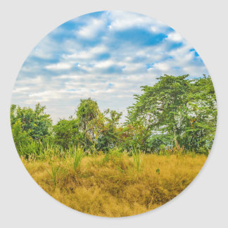 Meadow Tropical Landscape Scene, Guayaquil Classic Round Sticker