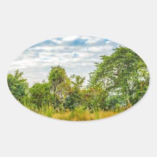 Meadow Tropical Landscape Scene, Guayaquil Oval Sticker