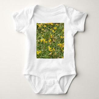 Meadow Vetchling Baby Bodysuit