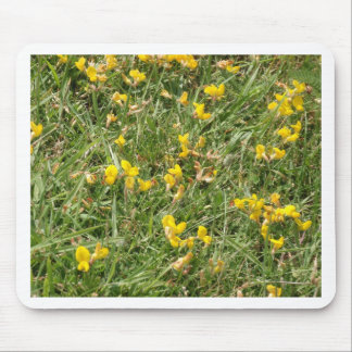 Meadow Vetchling Mousepad