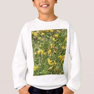 Meadow Vetchling Sweatshirt