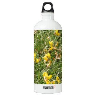 Meadow Vetchling Water Bottle