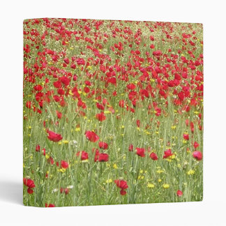 Meadow With Beautiful Bright Red Poppy Flowers Binder