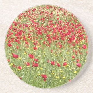 Meadow With Beautiful Bright Red Poppy Flowers Drink Coasters