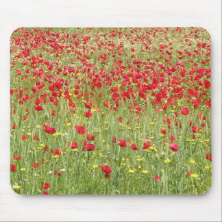 Meadow With Beautiful Bright Red Poppy Flowers Mouse Pad