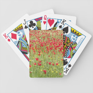 Meadow With Beautiful Bright Red Poppy Flowers Bicycle Playing Cards