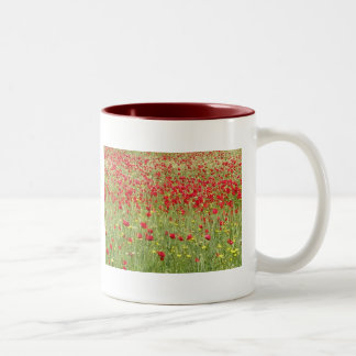 Meadow With Beautiful Bright Red Poppy Flowers Two-Tone Coffee Mug