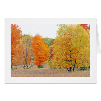"""""""MEADOW WITH FALL COLOR"""" MICHIGAN LOCALE CARD"""