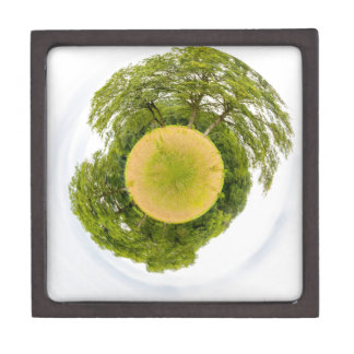 Meadow with trees like little planet gift box