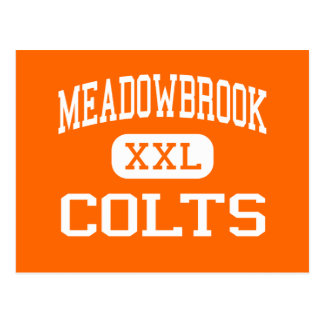 Meadowbrook - Colts - High School - Byesville Ohio Postcard