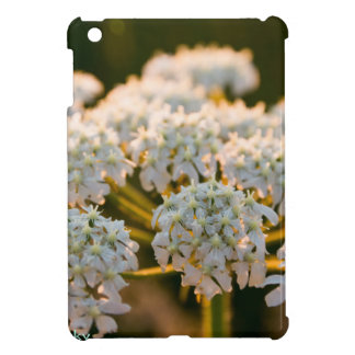meadowflowersbywhacky (5 of 13).JPG iPad Mini Cover