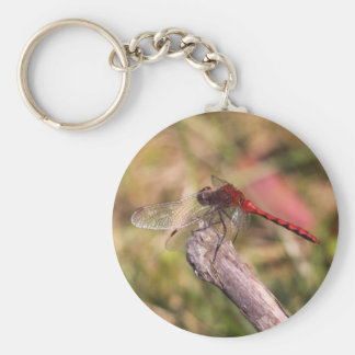 Meadowhawk de rubíes llaveros personalizados