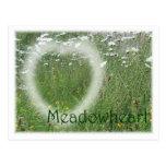 Meadowheart Wide Postcard