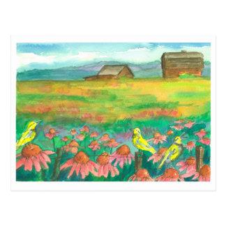 Meadowlark Birds Watercolor Flowers Painting Postcard