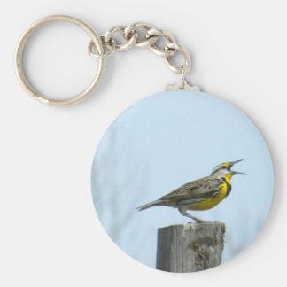 Meadowlark hermoso con las marcas amarillas y gris llavero redondo tipo pin