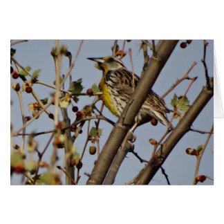 Meadowlark In Tree Card