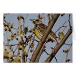 Meadowlark In Tree Greeting Card