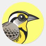 Meadowlark occidental etiquetas redondas