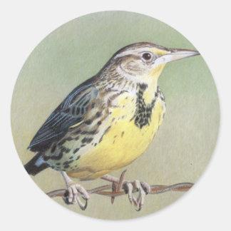 Meadowlark occidental pegatina redonda