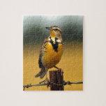 Meadowlark occidental rompecabezas con fotos