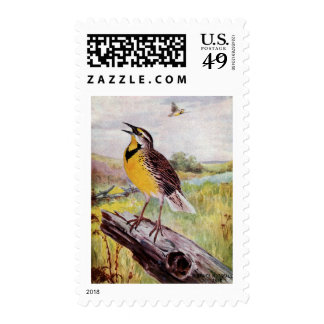 Meadowlark on a Branch Stamps