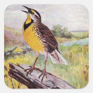 Meadowlark on a Branch Square Sticker