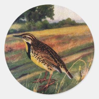 Meadowlarks in a Grassy Field Classic Round Sticker