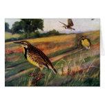Meadowlarks in a Grassy Field Greeting Card