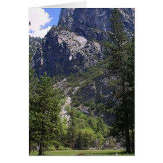 Meadows Cliffs Pinetrees Card
