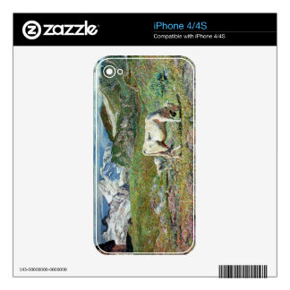 Meadows in Spring iPhone 4S Decal