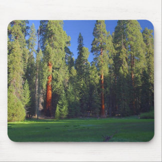 Meadows Sequoia Mouse Pad