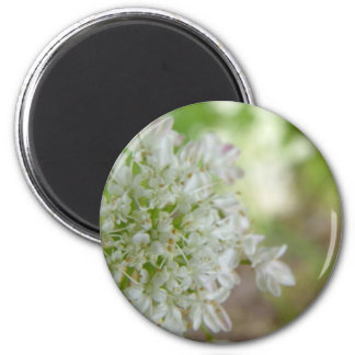 Meadowsweet 2 Inch Round Magnet