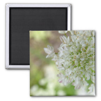 Meadowsweet 2 Inch Square Magnet