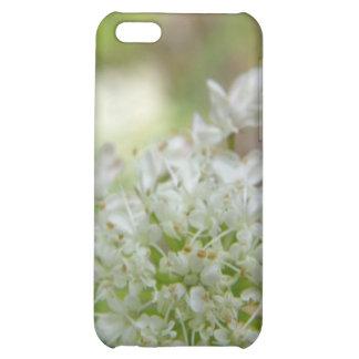 Meadowsweet iPhone 5C Cases