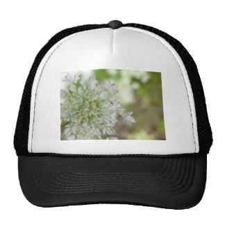 Meadowsweet Trucker Hat