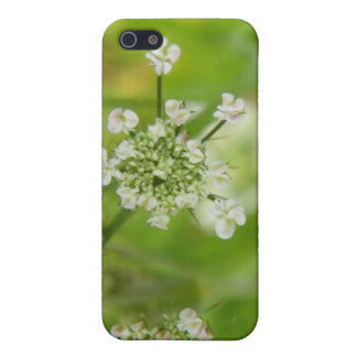 Meadowsweet verde iPhone 5 protectores