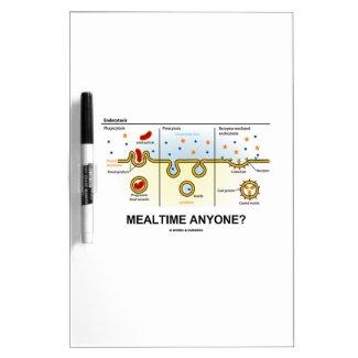 Mealtime Anyone? (Endocytosis Cellular Eating) Dry-Erase Whiteboard