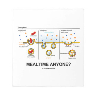 Mealtime Anyone? (Endocytosis Cellular Eating) Notepad