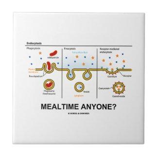 Mealtime Anyone? (Endocytosis Cellular Eating) Ceramic Tiles
