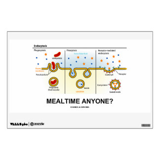 Mealtime Anyone? (Endocytosis Cellular Eating) Wall Decal