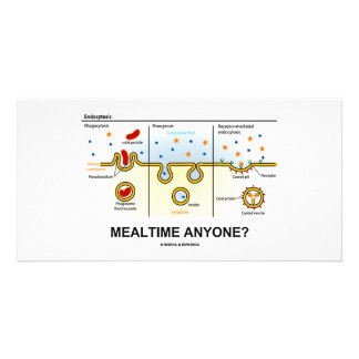 Mealtime Anyone? (Endocytosis Digestion Humor) Photo Card