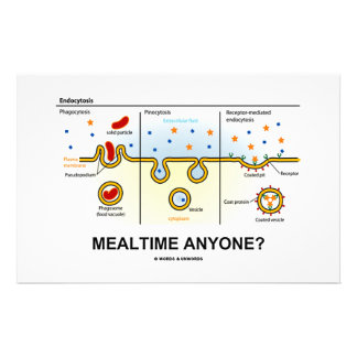 Mealtime Anyone? (Endocytosis Digestion Humor) Stationery
