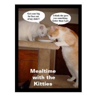 Mealtime con los gatitos postal