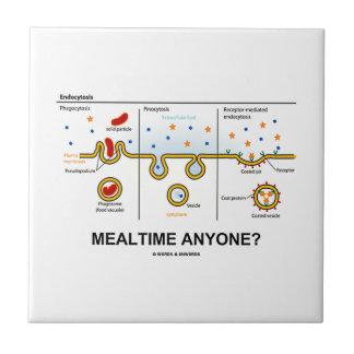 ¿Mealtime cualquier persona? (Consumición celular  Azulejos