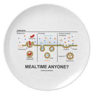¿Mealtime cualquier persona? (Consumición celular  Platos De Comidas