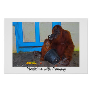 Mealtime with Mommy Orangutan Poster
