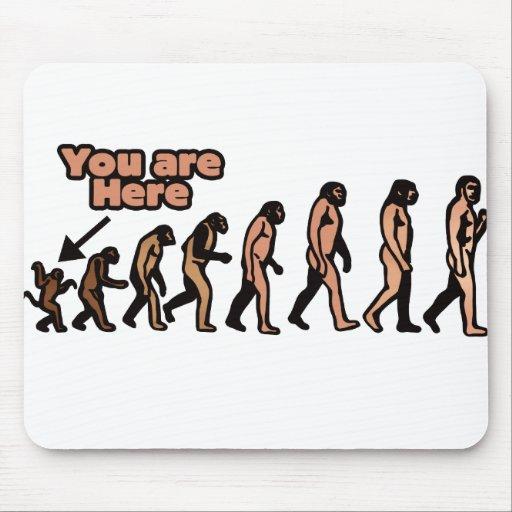 Mean Evolution Parody Mouse Pad